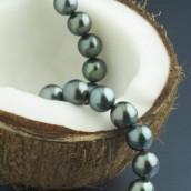 Biser iz kokosa