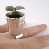 Prsten umesto bašte